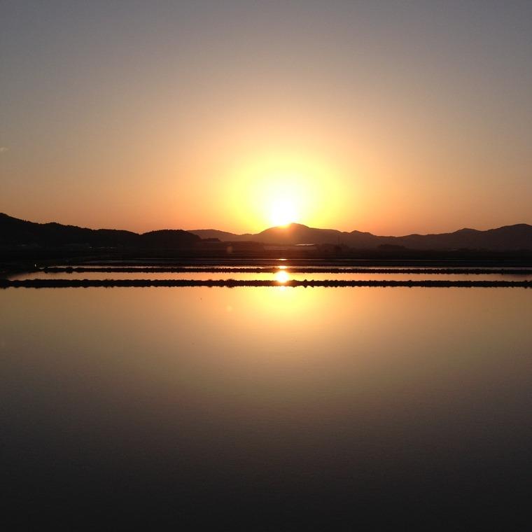 2016 田んぼに沈んでいく夕陽