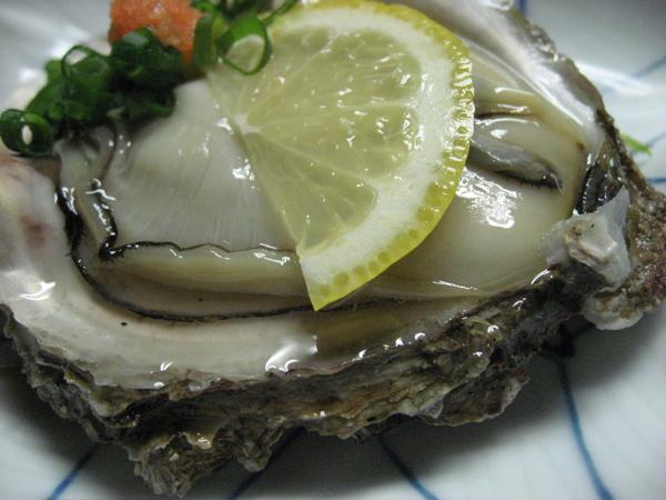 岩牡蛎2009