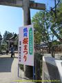 山形県 鶴岡公園 桜まつり2016.04.14(正門)