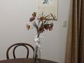 コスモスの絹の花
