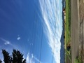 秋の空とヒマワリ畑