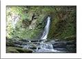 滝のマイナスイオンと森林浴