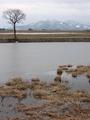 冬の月山2009