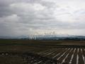 刈田の藤島2010初秋