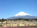 今日の富士山 1