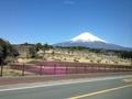 今日の富士山 2